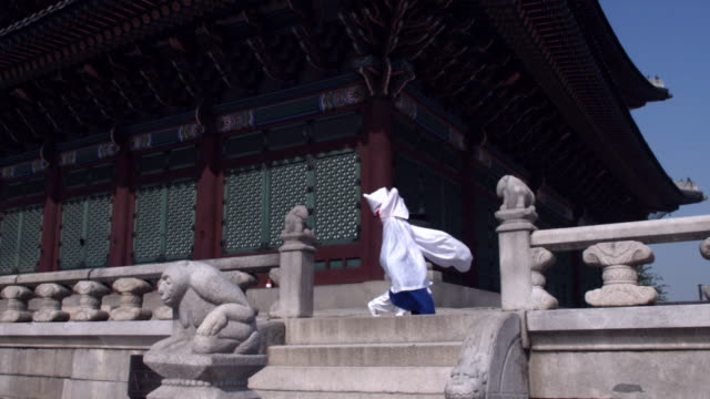 ws td woman in traditional dress performing buddhist dance behind gyeongbokgung palace / seoul, south korea  - animal representation stock videos & royalty-free footage
