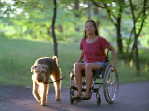 PAN woman in wheelchair walking dog on path in park