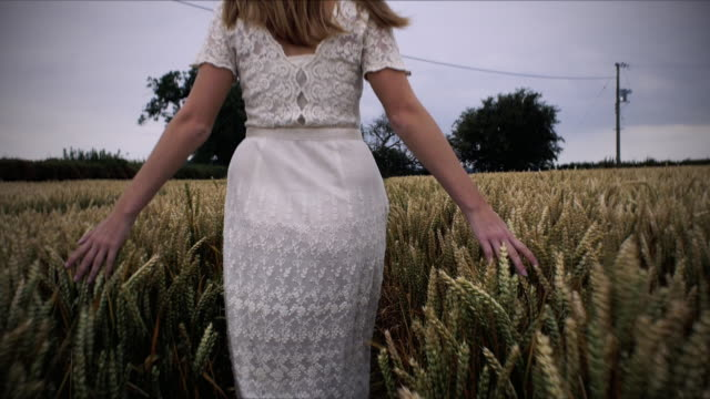 woman in white cotton dress walking through field of wheat. - long hair stock videos & royalty-free footage