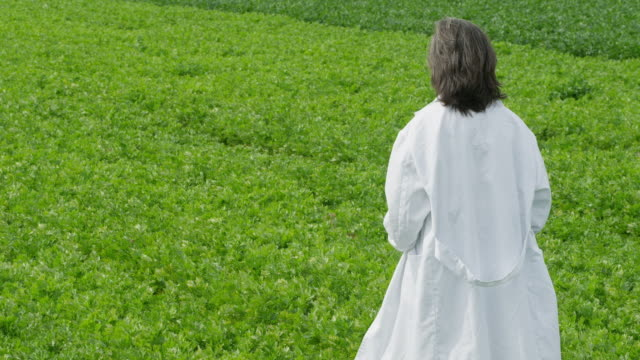 ws woman in white lab coat walking through green field, rear view - laboratory coat stock videos & royalty-free footage