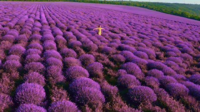 vidéos et rushes de femme dans la robe jaune exécutant sur un beau champ de lavande - violet