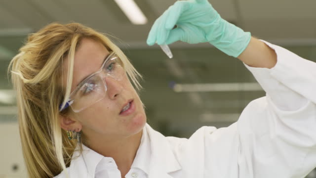 ms a woman inspects a sample in a genetics laboratory - laboratory stock videos & royalty-free footage