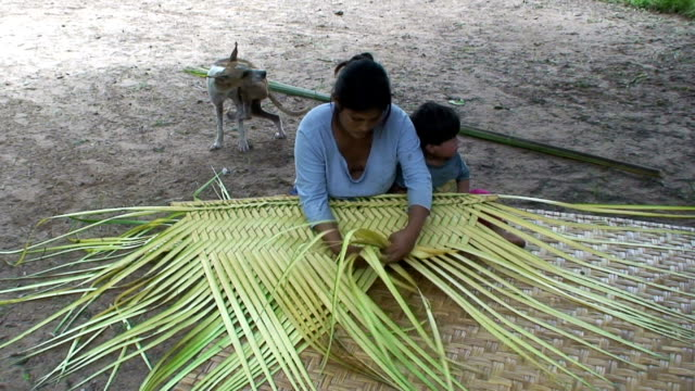 Woman interweaving a mat, village of Mapajo inhabited by the tribe of Mosetenes, Bolivia, Amazon