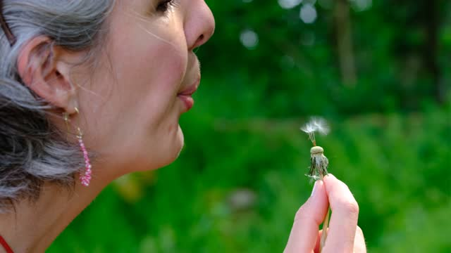 woman is blowing a dandelion flower on june 9, 2021 in redu, belgium. superstitious people think it brings good luck to blow dandelion seeds. - tranquil scene stock videos & royalty-free footage