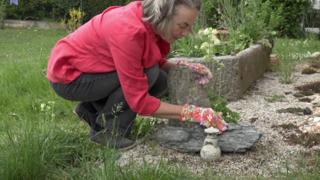 a woman is building a small zen garden at home - gartenhandschuh stock-videos und b-roll-filmmaterial