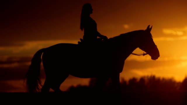 donna è a cavallo all'orizzonte al tramonto - bestiame video stock e b–roll