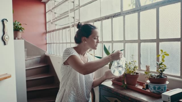 woman is watering flowers at home (slow motion) - pot plant stock videos and b-roll footage