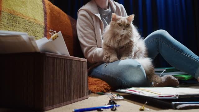 la donna lavora da casa. è seduta sul pavimento e spinge il gatto che cammina sui documenti - contrariato video stock e b–roll