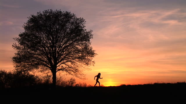 stockvideo's en b-roll-footage met hd: woman jogging at sunset - jogster