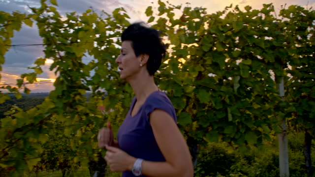 ws woman jogging in the vineyard - whole stock videos & royalty-free footage