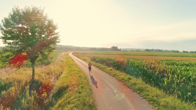 aerial woman jogging on a country road - slovenia meadow stock videos & royalty-free footage