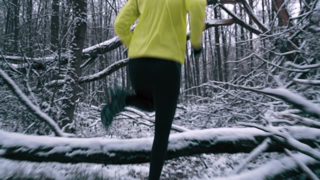 ws woman jogging through a snowy forest - branch plant part stock videos and b-roll footage