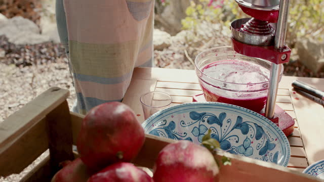 woman juicing pomegranates with manual juicer - peel stock videos & royalty-free footage