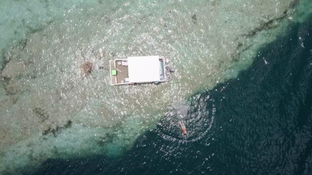 stockvideo's en b-roll-footage met vrouw springen vanaf een boot aan bacalar lagune, mexico. - rondrijden