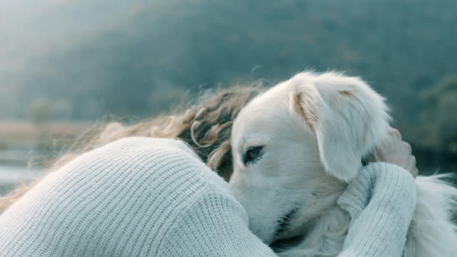 vídeos de stock e filmes b-roll de woman kissing and hugging dog - one animal