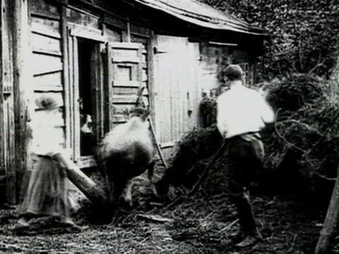 ms woman leading cow in cowshed audio/ russia - 1925年点の映像素材/bロール