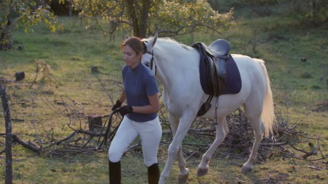 Weißes Pferd von Rein auf Ranch führt Frau