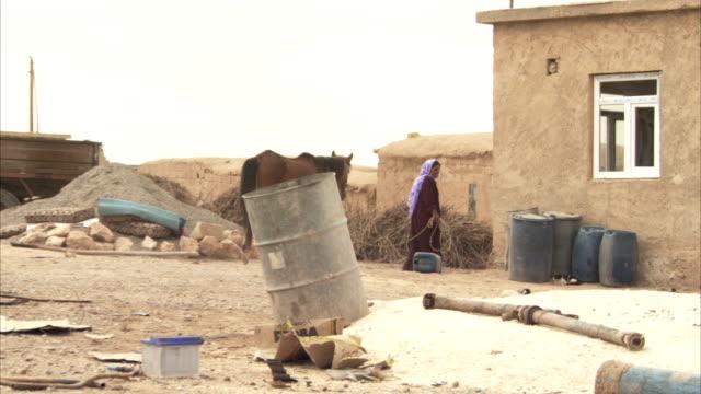 a woman leads a horse through a cluttered yard, stopping beside an adobe house. - adobe bildbanksvideor och videomaterial från bakom kulisserna