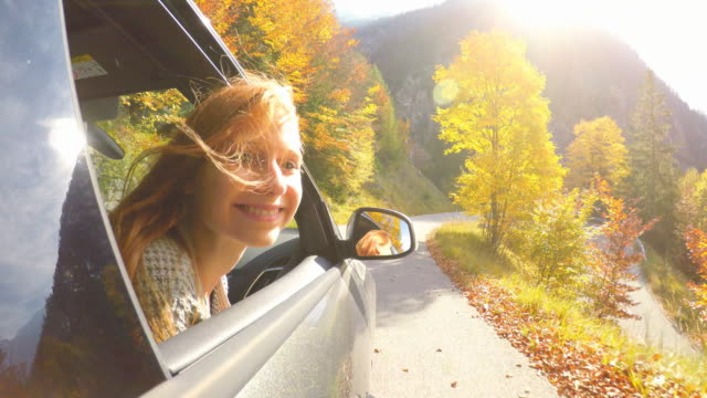 woman leaning out of car window while driving through autumn forest - autumn stock videos & royalty-free footage
