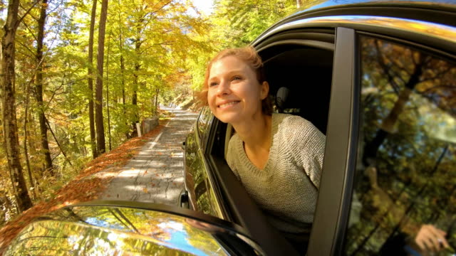 woman leaning out of car window while driving through autumn forest - mountain road stock videos & royalty-free footage