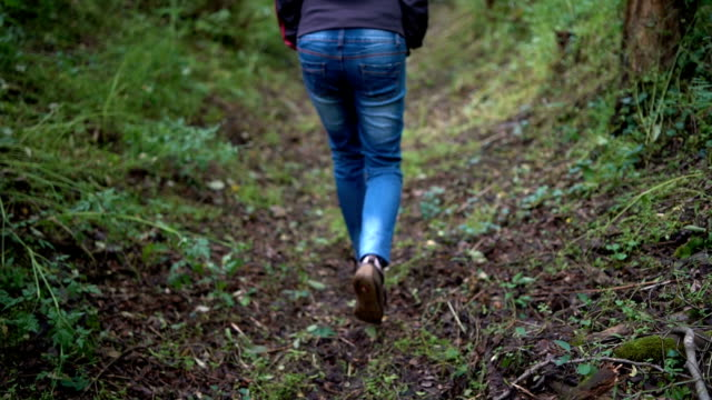 woman legs walk through forest - steep hill stock videos & royalty-free footage
