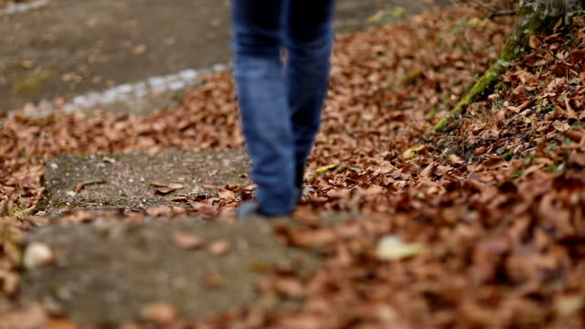 woman legs walking down the stairs with autumn leaves - brown stock videos & royalty-free footage
