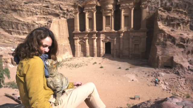 woman looking at ad-dier and petting cat  in petra - temple building stock videos & royalty-free footage