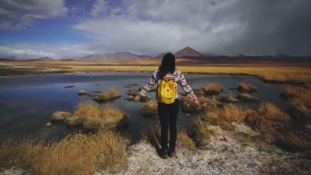 vídeos y material grabado en eventos de stock de mujer mirando la vista panorámica del lago en el desierto de atacama - destinos turísticos