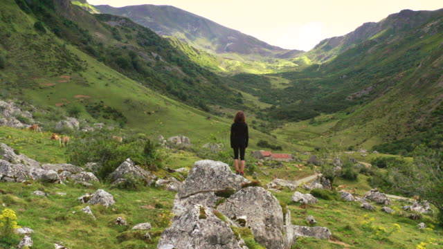 vídeos de stock e filmes b-roll de woman looking at the landscape - cena de tranquilidade