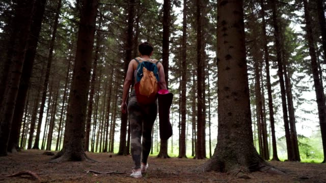 woman looking for perfect place for yoga - pinacee video stock e b–roll