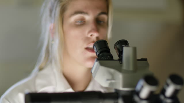 MS A woman looks into a microscope in a laboratory