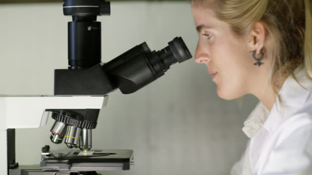 cu a woman looks into a microscope in a laboratory - earring stock videos & royalty-free footage