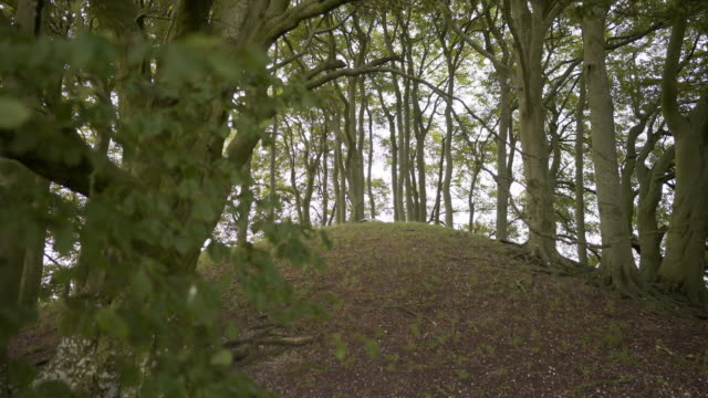 a woman lying down in the distance on the earth on top of an ancient neolithic burial mound - avebury stock videos & royalty-free footage