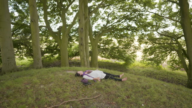 a woman lying down on the earth on top of an ancient neolithic burial mound - avebury stock videos & royalty-free footage
