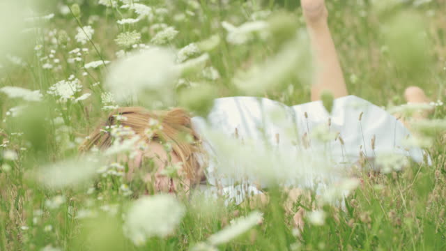 slo mo woman lying in the middle of a meadow full of wildflowers - reclining stock videos & royalty-free footage