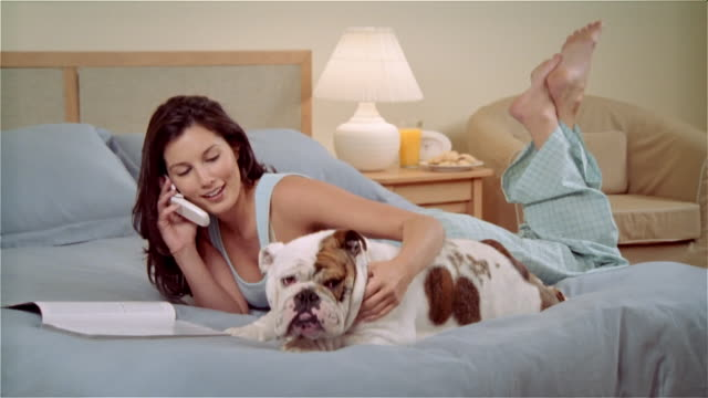 cu, woman lying on bed, stroking bulldog  and talking on mobile phone - nightwear stock videos & royalty-free footage