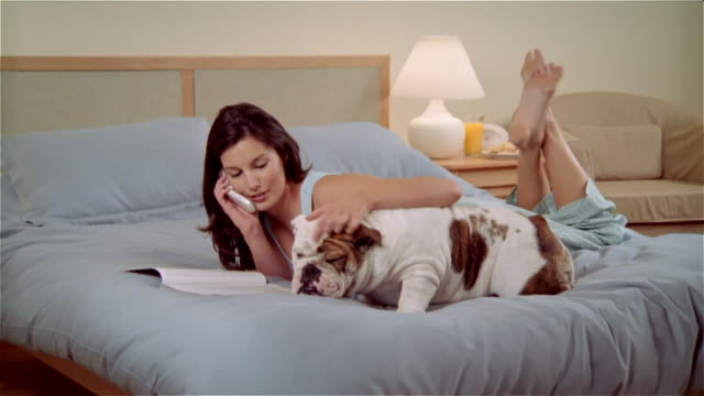 CU, ZO, ZI, Woman lying on bed, stroking Bulldog  and talking on mobile phone