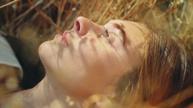woman lying on meadow - sdraiato video stock e b–roll