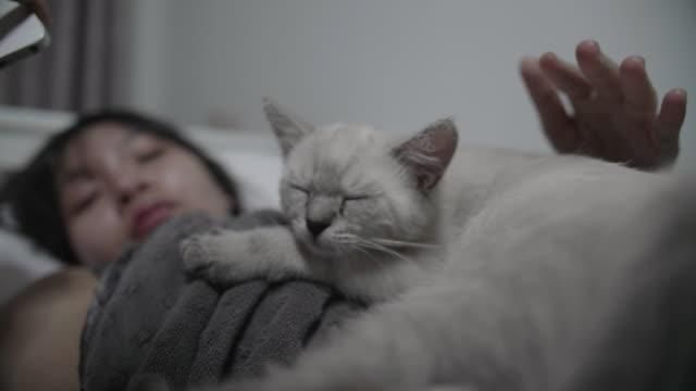 vidéos et rushes de femme couchée en caressant son chaton dans son lit à la maison - caresser