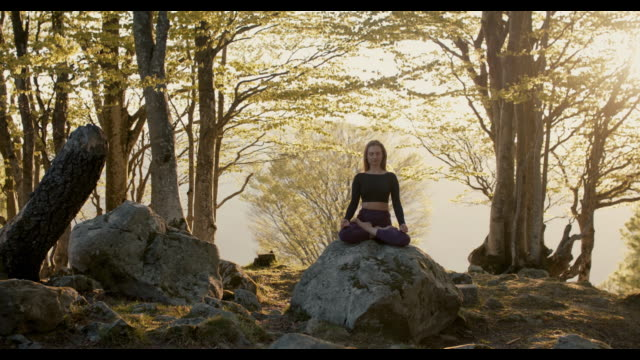 woman meditating at sunset in forest - lotus position stock videos & royalty-free footage