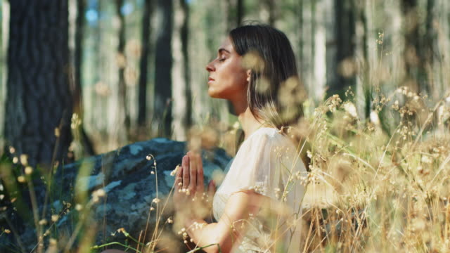 woman meditating in forest - yoga stock videos & royalty-free footage