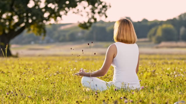ds woman meditating in the middle of a meadow - mid adult women stock videos & royalty-free footage