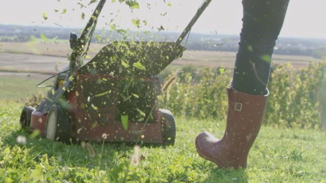 slo mo woman mowing the grass in a vineyard - lawn stock videos & royalty-free footage