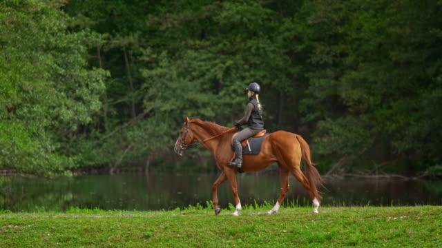 vídeos de stock, filmes e b-roll de slo mo ts mulher em um passeio a cavalo ao longo de um lago - montar um animal