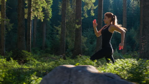 woman on a morning jog - woodland stock videos & royalty-free footage