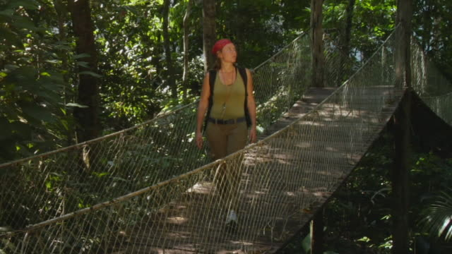 stockvideo's en b-roll-footage met slo mo, ws, woman on canopy walk in jungle, manaus, brazil - haarband
