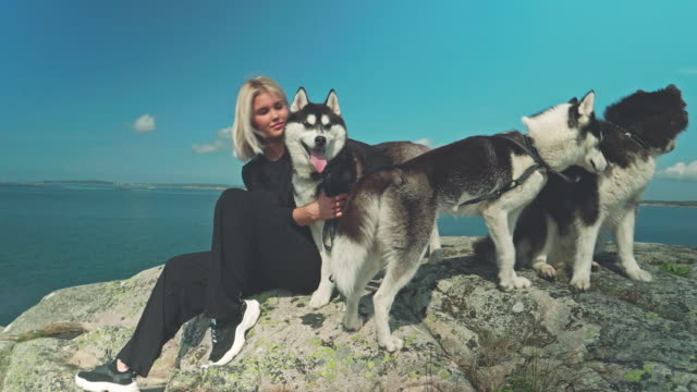 woman on cliff near the sea with three siberian husky dogs - pets stock videos & royalty-free footage