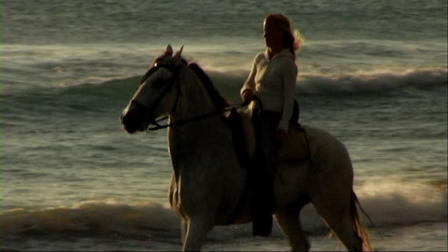 woman on horse at seashore, riding through surf - herbivorous stock videos & royalty-free footage