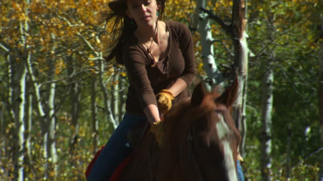 woman on horseback - altri spezzoni di questa ripresa 1139 video stock e b–roll