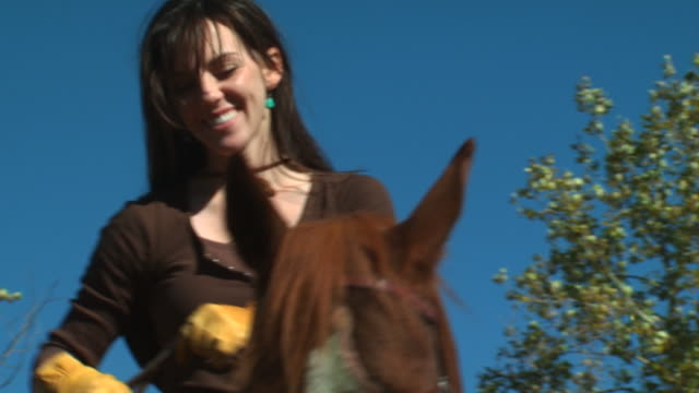 woman on horseback - see other clips from this shoot 1139 stock videos & royalty-free footage